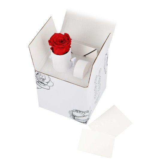 Dárková stabilizovaná růže v krabičce