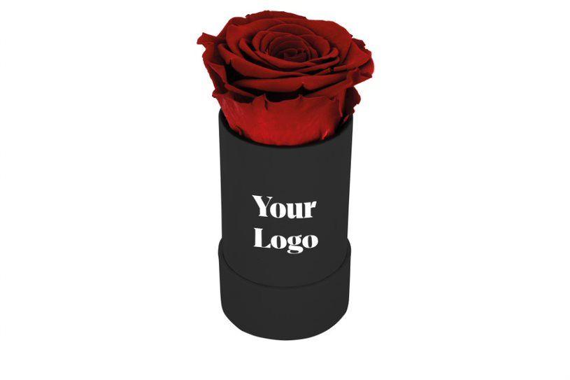 Dárková stabilizovaná růže s reklamou