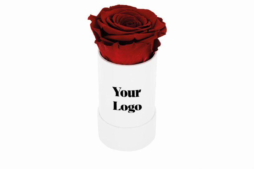 Dárková stabilizovaná růže s firemním logem